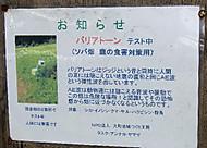 Sikayoke_000_3