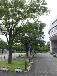 Kaijixyou