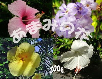 Hana_kakou_00